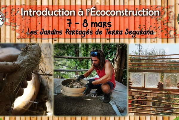 stage ecoconstruction